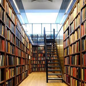 Библиотеки Михайлова
